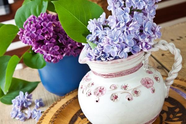 canlı çiçek